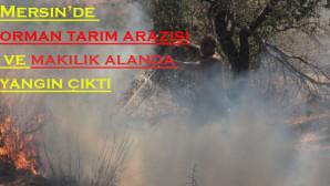 Mersin'de Orman Tarım Arazisi Makilik Alanda Yangın Çıktı