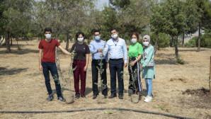 Başkan Seçer'in Öğrencilere Söz Verdiği Zeytin Fidanları Dikildi