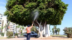 Mersin Büyükşehir'den Köşe Bucak Dezenfeksiyon
