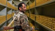 Paşinyan, sınırdaki altın madeni için Putin'den yardım istedi