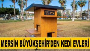 Mersin Büyükşehir'den Kedi Evleri