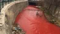 Başkent sakinleri tedirgin! Ankara Çayı kırmızıya boyandı, görevliler harekete geçti