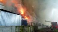 İçeride binlerce hayvan var! 3 bin 500 metrekarelik dev çiftlik alev alev yanıyor