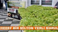 Tarsus Belediyesi'nden 1 Milyon Ücretsiz Yerli Marul Dağıtımı
