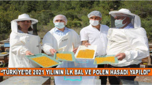 """""""Türkiye'de, 2021 Yılının İlk Bal Ve Polen Hasadı Yapıldı"""""""