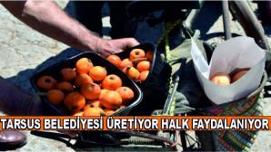 TARSUS BELEDİYESİ ÜRETİYOR HALK FAYDALANIYOR