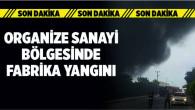 Tarsus Organize Sanayi Bölgesinde Bulunan Madeni Yağ Fabrikasında Yangın Çıktı