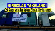Mersin Merkezli 7 İldeki Oto Hırsızlığı Operasyonunda 21 Kişi Yakalandı