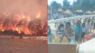 Bodrum ve Milas'ta alevler büyüdü! Büyük otellerde bulunan turistler teknelerle tahliye edildi