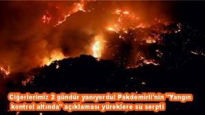 """Ciğerlerimiz 2 gündür yanıyordu! Pakdemirli'nin """"Yangın kontrol altında"""" açıklaması yüreklere su serpti"""