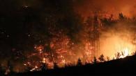 Türkiye için kara gün! Antalya'dan sonra 5 şehirde daha yangın çıktı