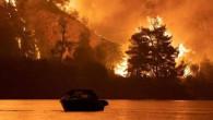 Yunanistan'ın isteği şaşırttı! Bakan Pakdemirli: Yangınlar hafiflerse uçak sağlayabiliriz