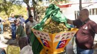 Büyükşehir'den Gülnarlı Üreticilere 'Badem Soyma Makinesi'