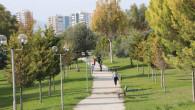 Toroslar'da Yeşil Dokuya Sahip Çıkılıyor